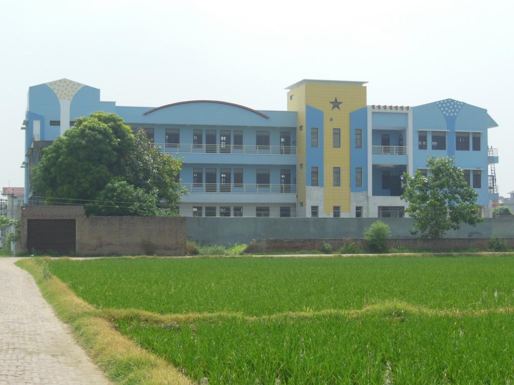 New school 010